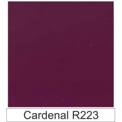 1/10 Acetato color Cardenal R223