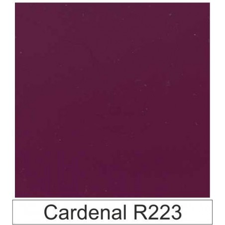 1/10 Acetato color Cardenal R223