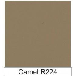 1/10 Acetato color Camel R224
