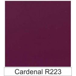 Acetato celulosa Cardenal R223